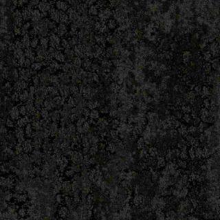 Gecko-Nightshadow