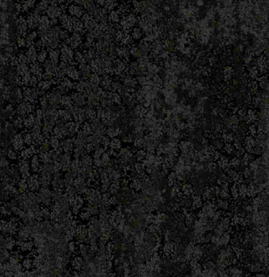 Luxury Carpet Tile Gecko